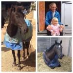 HorseandRiderIzzy_000