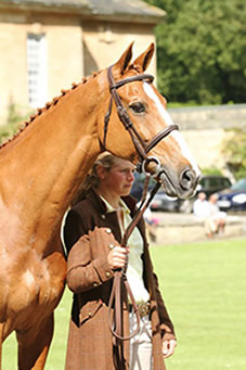 orlando-bramham-trot-up-before-sj-alex-col_000