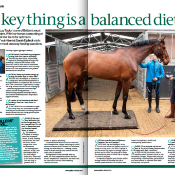 Spillers Horse & Hound Feature March 2014