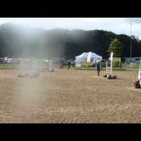 Thistledown Poposki Showjumping at Somerford Park OI 14/8/14