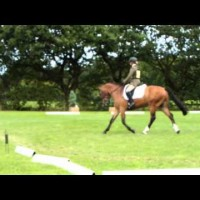 Calibro's Novice Dressage at Somerford Park 15/8/14