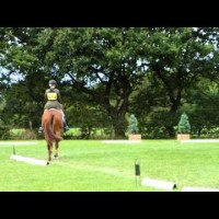 Bugbrooke's Novice Dressage at Somerford Park 15/8/14
